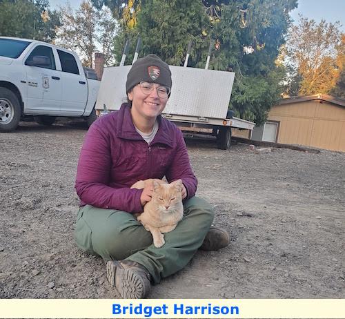 Bridget Harrison